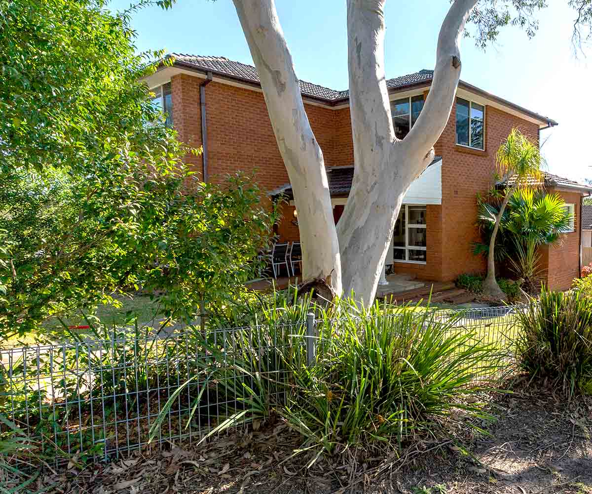 Frenchs Forest 1