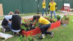 Sunnyfield Corporate Volunteering